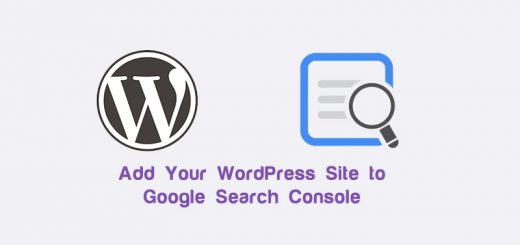wordpress-search-cpnsole